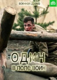Один в поле воин .(2018)