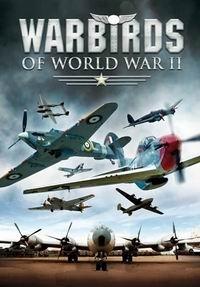 Железные птицы Второй Мировой войн — War Birds Of World War II